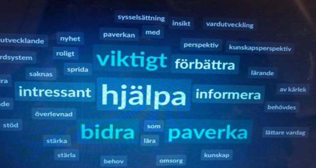 Ordmoln, nyckelord Riksförbundet Sällsynta diagnoser - Gemensamt lärande 2018 Foto Jonas Forsberg www.jfp.se
