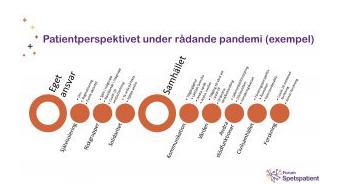 Illustrationen som visas är en sammanställning gjord av Forum Spetspatient efter ett möte med representanter från ett 20-tal olika diagnosföreningar, som visar att vi är många som delar samma oro.